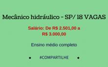 Mecânico hidráulico – SP/18 VAGAS